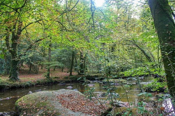 green setting near camping kergal gardens